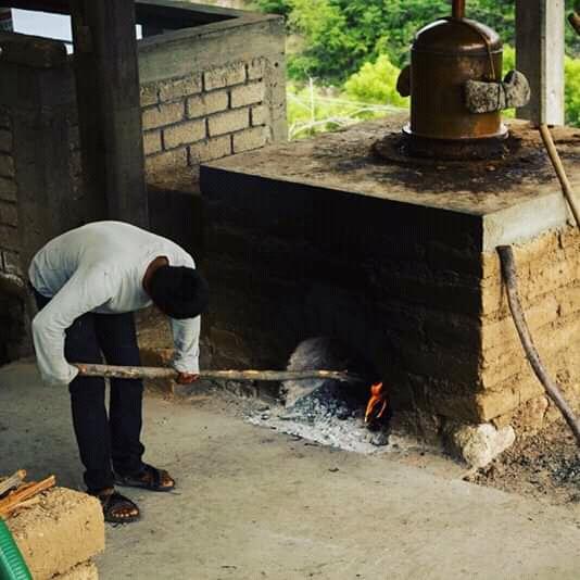 cooking mezcal oaxaca